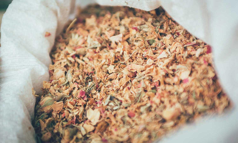 Botánicos que utilizamos en la elaboración del Vermut San Bernabé